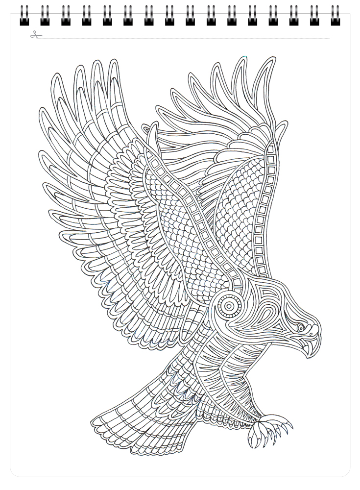 Wild Birds Large Adult Coloring Book