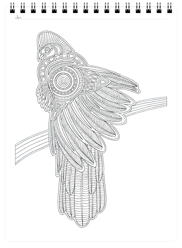 Action Publishing Coloring Book: Wild Birds · Tribal Inspired ...