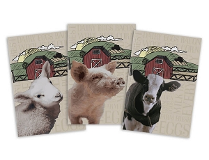 Barnyard Field Book 3-Pack